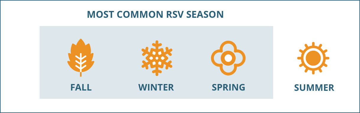 Most common RSV season
